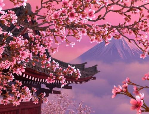 Ιαπωνικές Άλπεις & ανθισμένες κερασιές | 12 ΜΕΡΕΣ