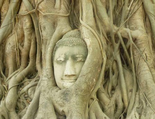 Πανόραμα Βόρειας Ταϊλάνδης, Μπανγκόκ | 12 ΜΕΡΕΣ