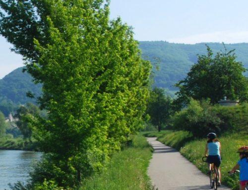 Ποδηλασία στο Δούναβη ( Πασάου – Βιέννη ) | 8 ΜΕΡΕΣ